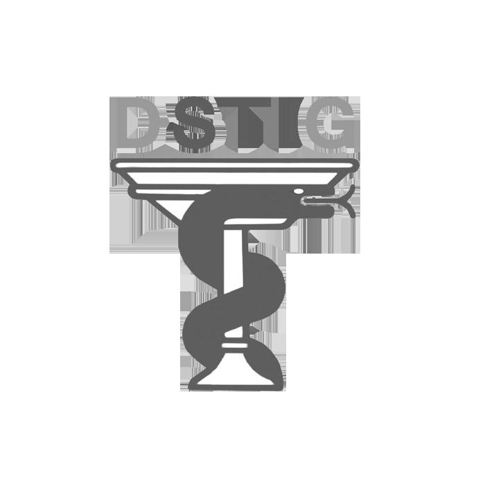 DSTIG Logofreigestellt3